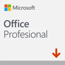 Office Professional 2019 descarga ESD